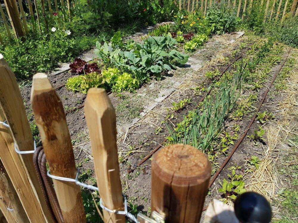 Der Garten Im Februar was steht an im frebruar gartenplanung und vorbereitung der beete